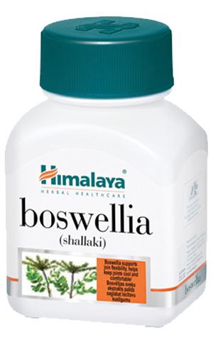 boswellia-shallaki-l